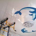 Потолки с дельфинами